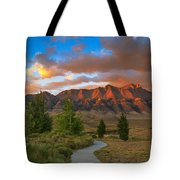 The Path To Beauty Tote Bag