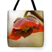 The Paw Paw Bloom Tote Bag