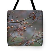 The Peaceful Fruit Of Nature Tote Bag