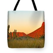 The Peak And Cardon Cacti In The Sunset In San Carlos-sonora Tote Bag