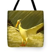 The Pelican Lands Tote Bag by Jeff Swan