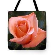 The Perfect Coral Rose Tote Bag