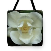 The Perfect Magnolia Bloom Tote Bag