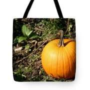 The Perfect Pumpkin In The Patch Tote Bag