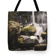 The Photographer's Quest Vi Tote Bag