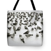 The Pigeon Tote Bag