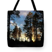The Pines At Sunset Tote Bag