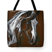 The Pinto Horse Tote Bag