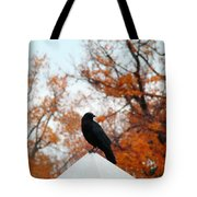 Crow Found The Perfect Pyramid Point Tote Bag