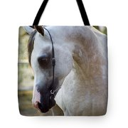 The Polish Arabian Horse Tote Bag