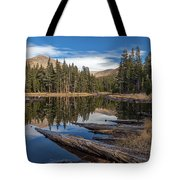 The Pond At Dana Meadow Tote Bag