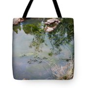 The Pond At The Top Of The Falls Tote Bag