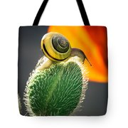 The Poppy And The Snail Tote Bag