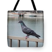 The Posing Pigeon Tote Bag