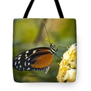 The Postman Butterfly  Tote Bag