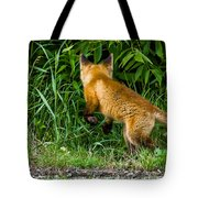 The Pounce Tote Bag