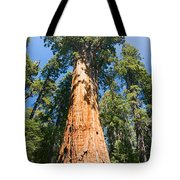 The President - Very Large And Old Sequoia Tree At Sequoia National Park. Tote Bag