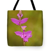 The Prettiest Pink Tote Bag