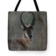 The Pronghorn 2 Dry Brushed Tote Bag