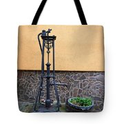 The Pump At St Goar Am Rhein Tote Bag
