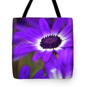 The Purple Daisy Tote Bag