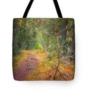 The Quiet Path Tote Bag