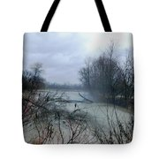 The Rains Came Tote Bag