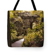 The Ramble Stone Arch Tote Bag