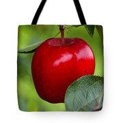 The Red Apple Tote Bag