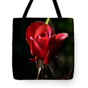 The Red Rode Bud Tote Bag by Robert Bales
