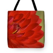 The Red Sun Dahlia Tote Bag