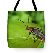 The Rednecked Bug- Close Up Tote Bag