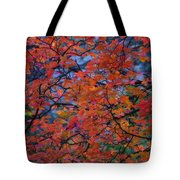The Reds Of Autumn  Tote Bag