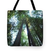 The Redwood Giants Tote Bag