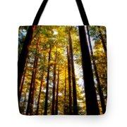 The Redwoods Of Florence Keller Park Tote Bag
