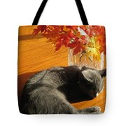 The Restful Leaves If Fall Tote Bag
