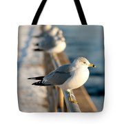 The Ring-billed Gull Tote Bag