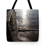 The River's Edge Tote Bag