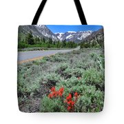 The Road Into Lundy Canyon Tote Bag