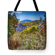 The Road To Cataloochee On A Frosty Fall Morning Tote Bag