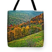 The Road To Glady Wv Tote Bag