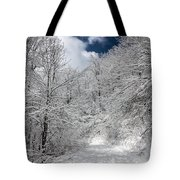 The Road To Winter Wonderland Tote Bag