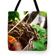 The Robins Nest Tote Bag