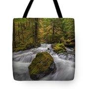 The Rock At Panther Creek Tote Bag