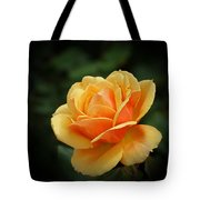The Rose 1 Tote Bag