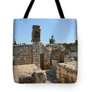The Ruins Tote Bag