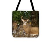 The Rutting Whitetail Buck Tote Bag