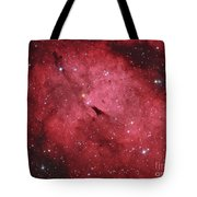 The Sadr Region In The Constellation Tote Bag