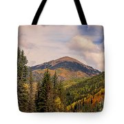 The San Juan National Forest Tote Bag