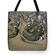 The Sand Box Tote Bag